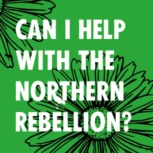 Can I help with the Northern Rebellion? - Image 1