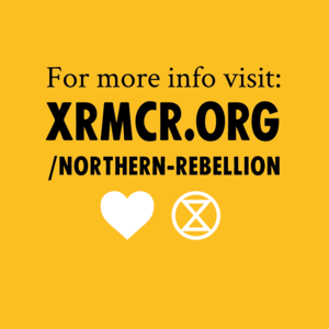 Should I come to the Northern Rebellion? - Image 4