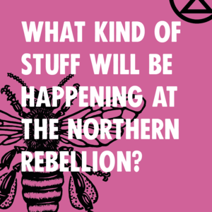 What kind of stuff will be happening at the Northern Rebellion? - Image 1